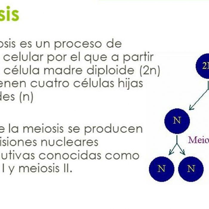 Estudio de ADN