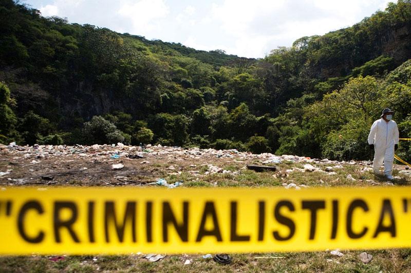 Perito Criminalístico