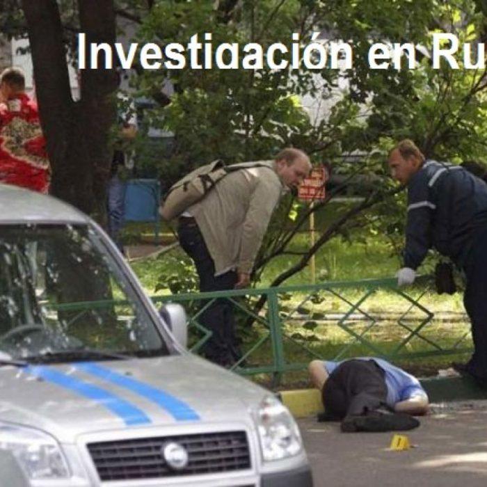 Perito Investigador