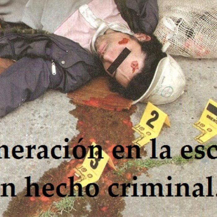 Perito recolector forense